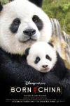 BorninChina_poster